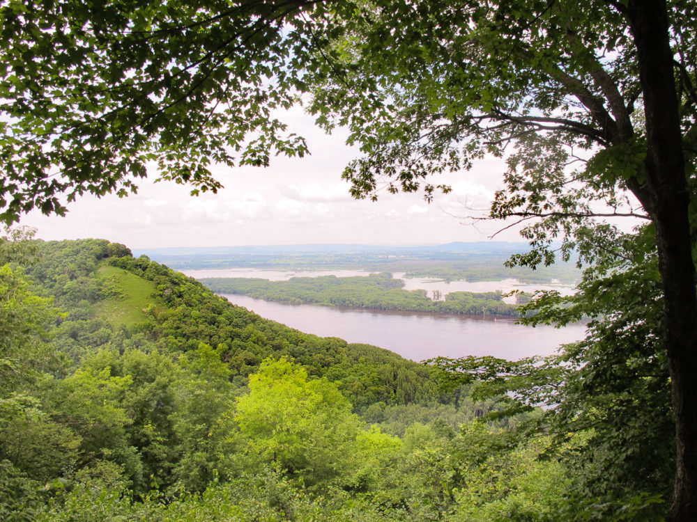 Mississippi River Valley, photo taken from Great River Bluffs State Park
